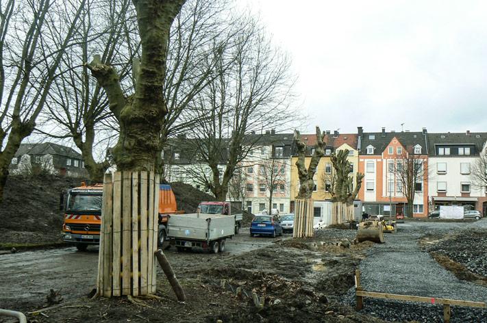 baumpflege-begutachtungen-bb-henry-baumschutz-2015-4
